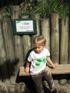 Things to do with kids in Brisbane, Brisbane Kids Activities